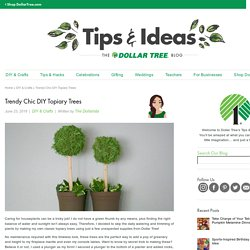 Trendy Chic DIY Topiary Trees