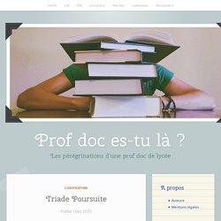 Triade Poursuite – Prof-doc es-tu là ?