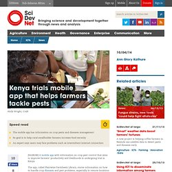 Kenya trials mobile app that helps farmers tackle pests - SciDev.Net Sub-Saharan Africa