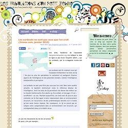 Les surdoués ne sont pas ceux que l'on croit (Inrees.com, janvier 2013)