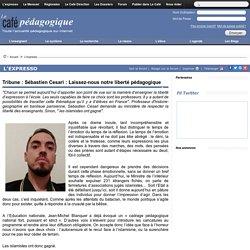 Tribune : Sébastien Cesari : Laissez-nous notre liberté pédagogique