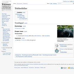 Trichechidae