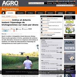 Biocontrôle : InVivo et Arterris testent l'épandage de trichogrammes sur maïs par drone - Actualités - Agrodistribution - Coopératives et négoces