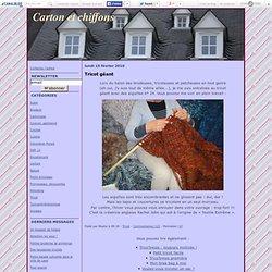 Tricot géant - Carton et chiffons