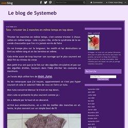 Tuto : tricoter les 2 manches en même temps en top down - Le blog de Systemeb