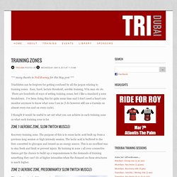 a triathlon club in Dubai - Blog - Training zones