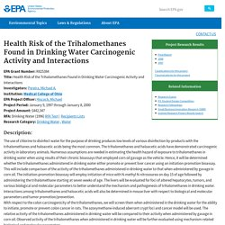 Health Risk of the Trihalomethanes Found in Drinking Water Carcinogenic Activity and Interactions