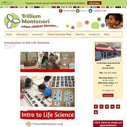 trilliummontessori.org