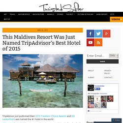 This Maldives Resort Was Just Named TripAdvisor's Best Hotel of 2015