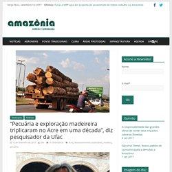 """""""Pecuária e exploração madeireira triplicaram no Acre em uma década"""", diz pesquisador da Ufac – Amazônia.org"""