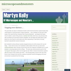 Tripping over diatom sculptures