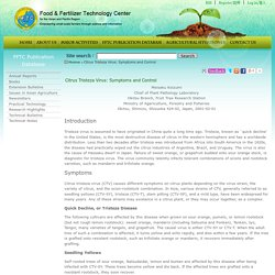 FFTC AGNET 01/02/01 CITRUS TRISTEZA VIRUS: SYMPTOMS AND CONTROL