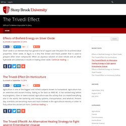 Blogs on The Trivedi Effect at Stonybrook.edu