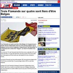 Trois Flamands sur quatre sont fiers d'être Belges - Belgique