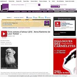 Un roman d'amour : Anna Karénine de Leon Tolstoï