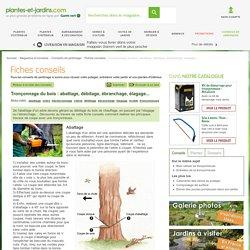 Tronçonnage du bois : abattage, débitage, ébranchage, élagage...