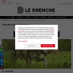 Trop de loups en France ? - Le Drenche