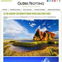 Le Fly Geyser du désert Black Rock aux Etats Unis