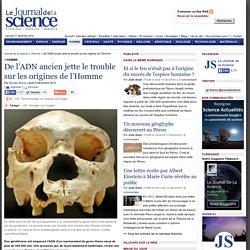 De l'ADN ancien jette le trouble sur les origines de l'Homme › Homme