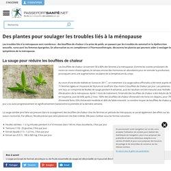 Troubles de la ménopause : comment les soulager avec les plantes ?