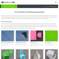 Print Quality Troubleshooting Guide