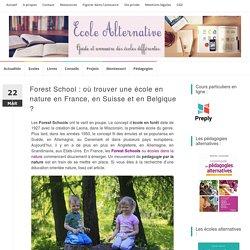 Forest School : où trouver une école en nature en France et en Belgique ? - Ecole alternative