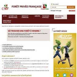 Où trouver une forêt à vendre ? - Forêt Privée Française