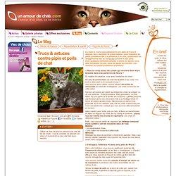 Trucs & astuces contre pipis et poils de chat