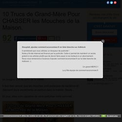 10 Trucs de Grand-Mère Pour CHASSER les Mouches de la Maison.