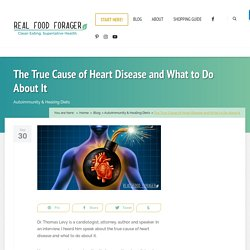 The True Cause of Heart Disease and What to Do About It