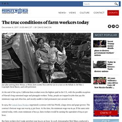 The true conditions of farm workers today