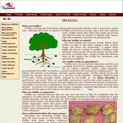FAQ truffles-Tuber melanosporum