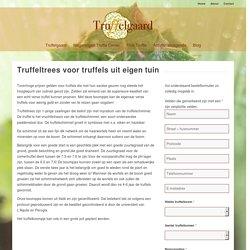 Truffeltrees voor truffels uit eigen tuin - Truffelgaard