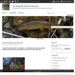La truite fario aux leurres. - Le blog de matt le lorrain.