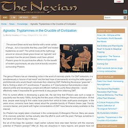 Agrostis: Tryptamines in the Crucible of Civilization - The Nexian