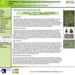TSEC-Biosys: Plant Crops Bioenergy Research UK - Switchgrass