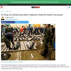 Tsukiji Fish Market - 10 Things You Need to Know Before Visiting