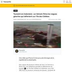 Tsunami en Indonésie : un témoin filme les vagues géantes qui déferlent sur l'île des Célèbes