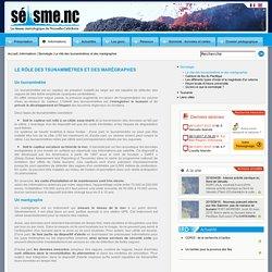 IRD Seisme - Le rôle des tsunamimètres et des marégraphes