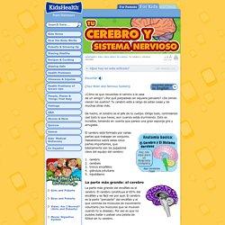 Tu cerebro y sistema nervioso