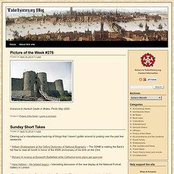 TudorHistory.org Blog