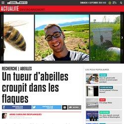 Un tueur d'abeilles croupit dans les flaques