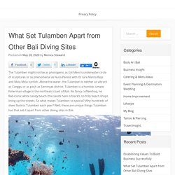 What Set Tulamben Apart from Other Bali Diving Sites
