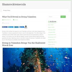 What You'll Reveal on Diving Tulamben - Shamrocktemecula