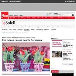 Des tulipes rouges pour le Parkinson