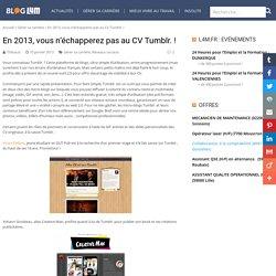 CV Tumblr 2013 - Créez votre CV en ligne - l4m le blog