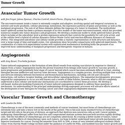 Tumor Model