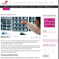 Brain and Spine Tumour - Causes, Symptoms, and Treatment