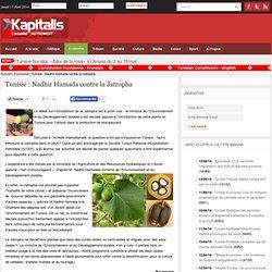 KAPITALIS 23/03/10 Tunisie : Nadhir Hamada contre la Jatropha (ministre de l'environnement)