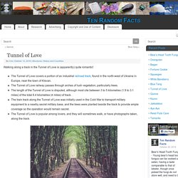 Tunnel of Love - Ten Random Facts